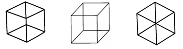 Necker cube and flat projections